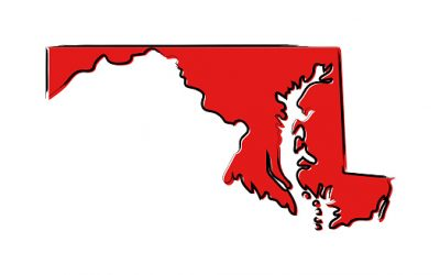 Have You Heard Of The Maryland Cyber Security Tax Credit?