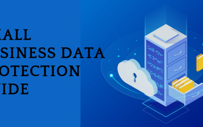 Small Business Guide to Protecting Critical Data